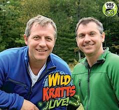 Wild Kratts - Live! Image