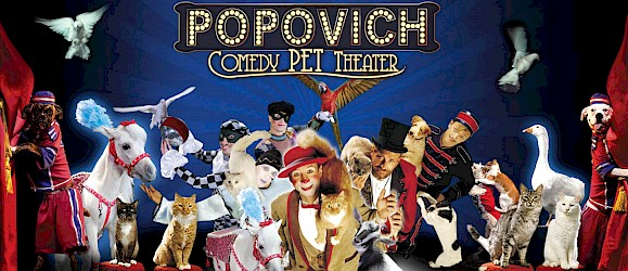 Popovich Comedy Pet Theater Image